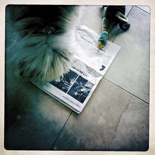 Julchen, Enzo und die Zeitung