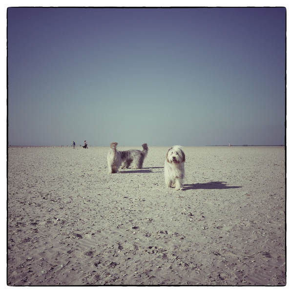 Meeting am Beach: Kommen noch mehr?
