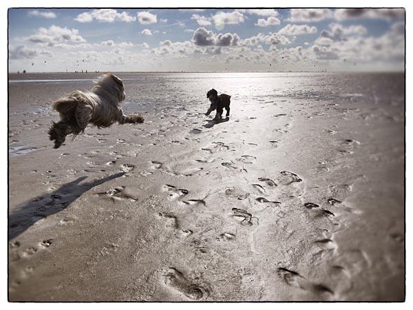 Julchen wird am Strand zur Überfliegerin