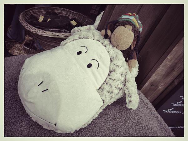 Ist es ein Ufo? Mit Schafsgrinsen?!