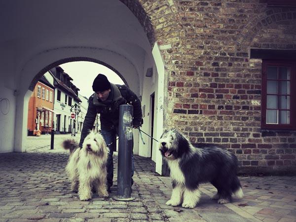 Stadtbesichtung: Julchen und Janni vor dem Nordertor in Flensburg