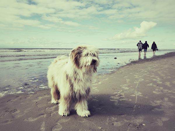 Klebrig und nass war der Sand heute.