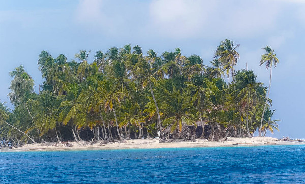 Palmen im Meer: San Blas
