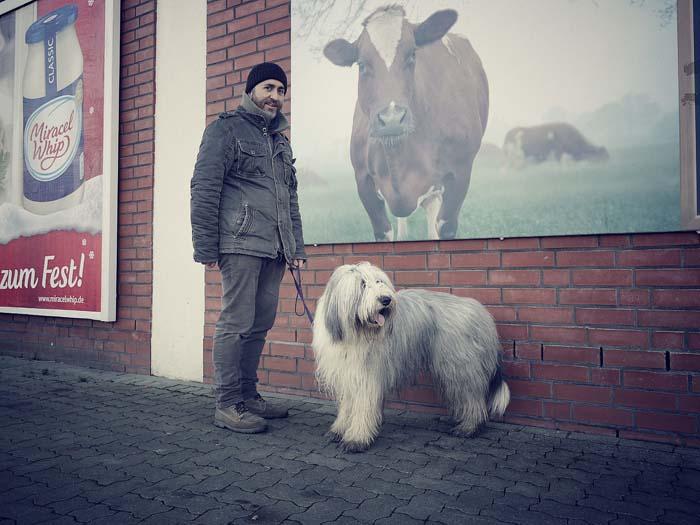 Eine Kuh an der Wand? Garding!