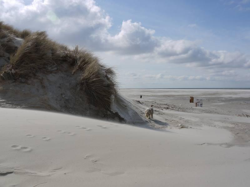 Nix wie an den Strand!