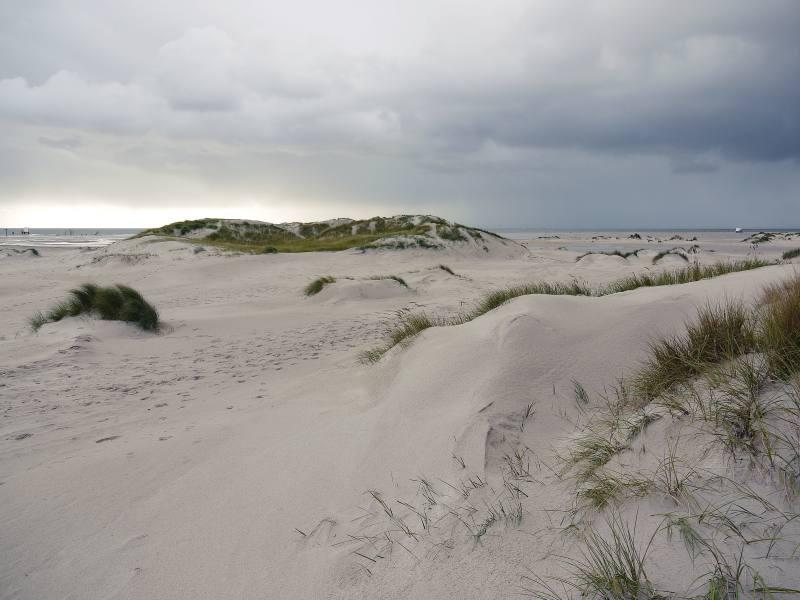 Die Dünen, das Meer