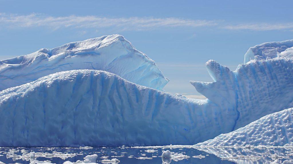 Eisberge vor Cuverville Island