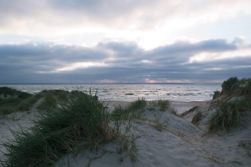 Aussicht mit Strandhafer