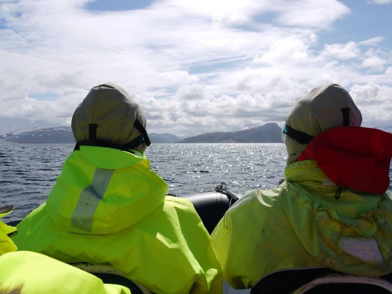 Saltfjord, Bodø