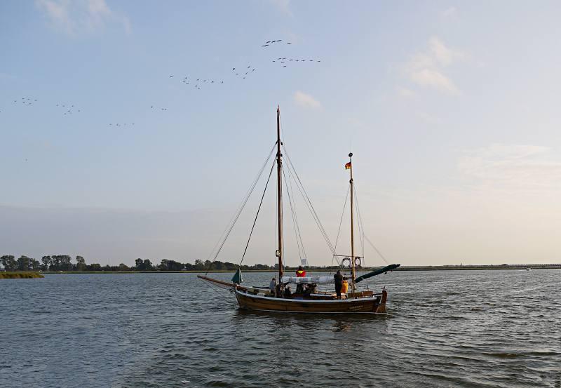 Kranich-Tour auf dem Wasser