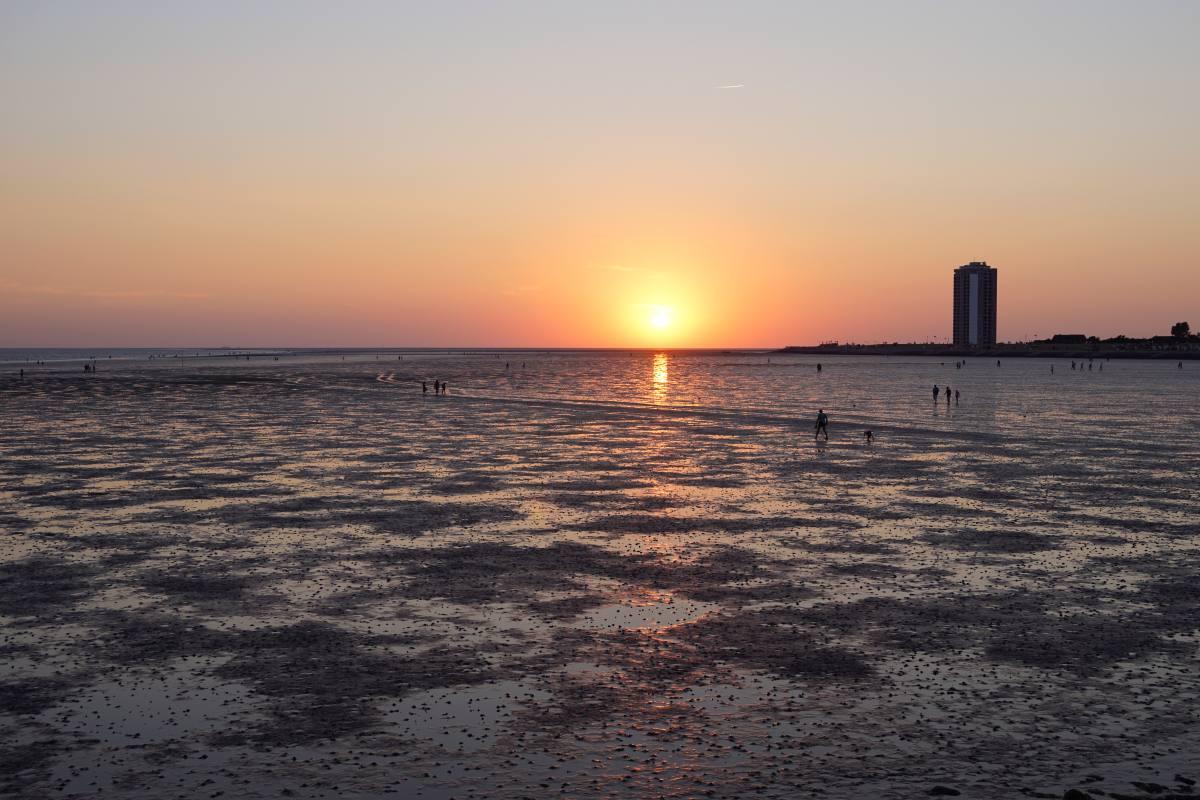 Zum Sonnenuntergang ins Watt
