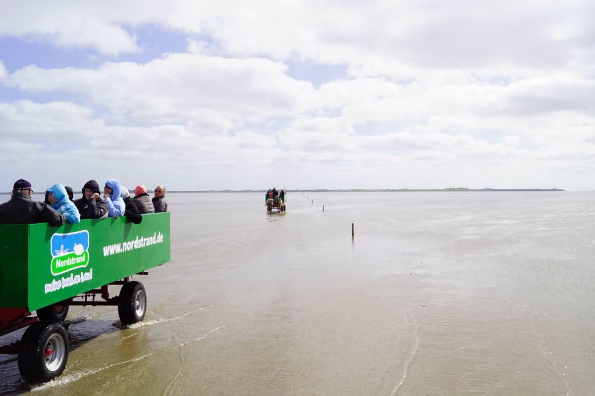 Wattenmeer Kutschfahrt