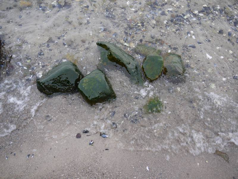 Sandwig, Strand
