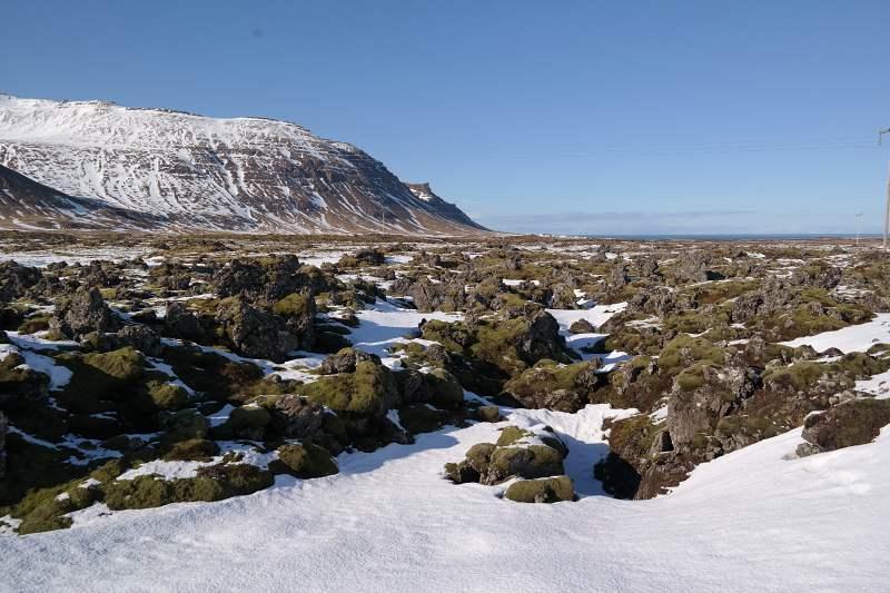 Lavafeld auf Snæfellsnes