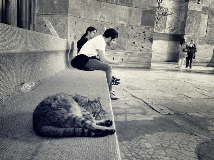 Gast in der Hagia Sophia