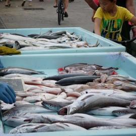 Fischverkauf...