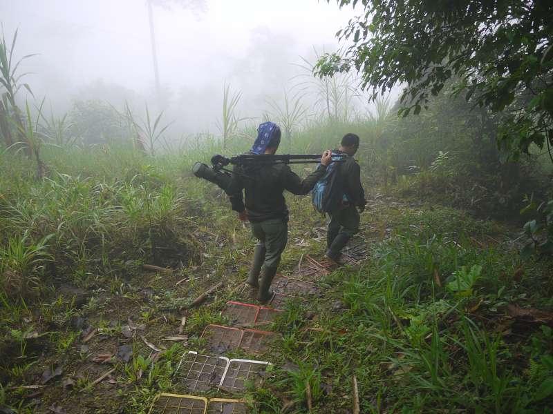 Geführte Tour durch den Nebelwald