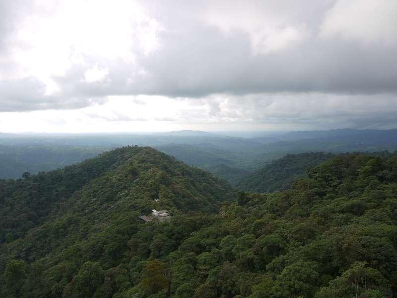 Wilde Natur: Chocó-Region