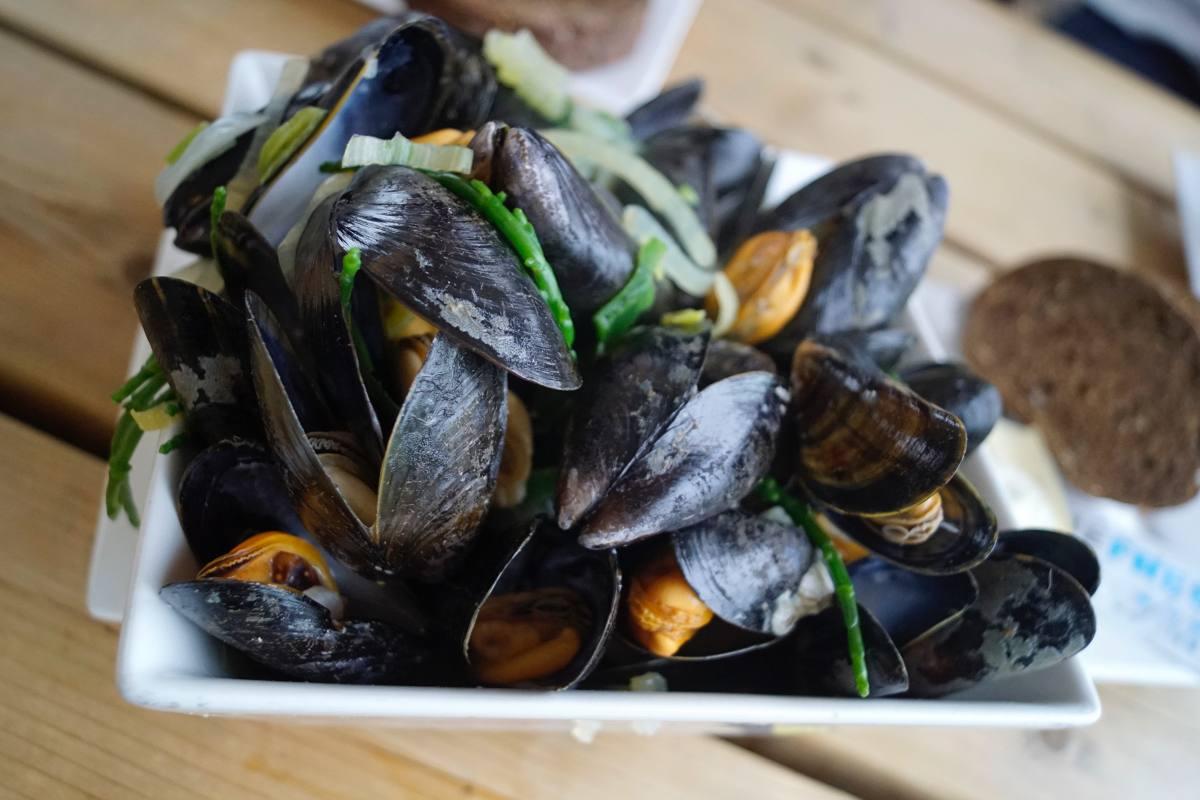 Muscheln aus Zeeland