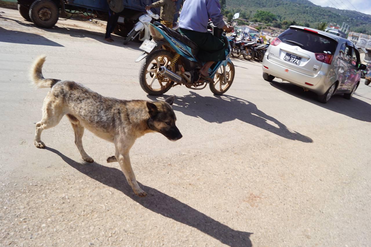 Auf der Straße in Myanmar