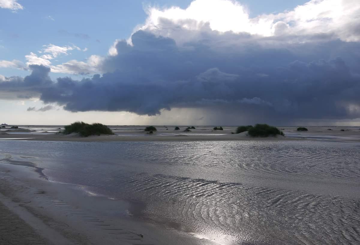 Amrum, Strand