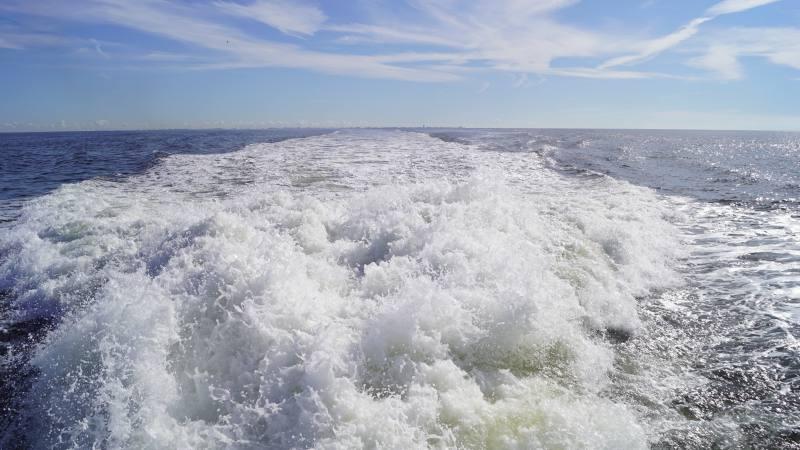 Heckwasser