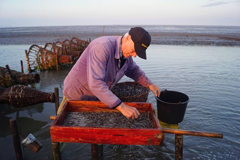 Der letzte Reusenfischer bei der Arbeit