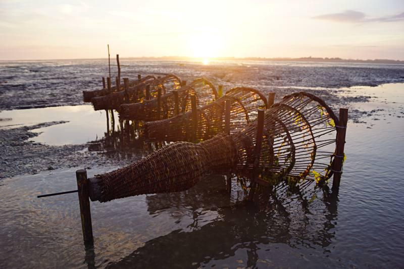 Die Reusen des Krabbenfischers