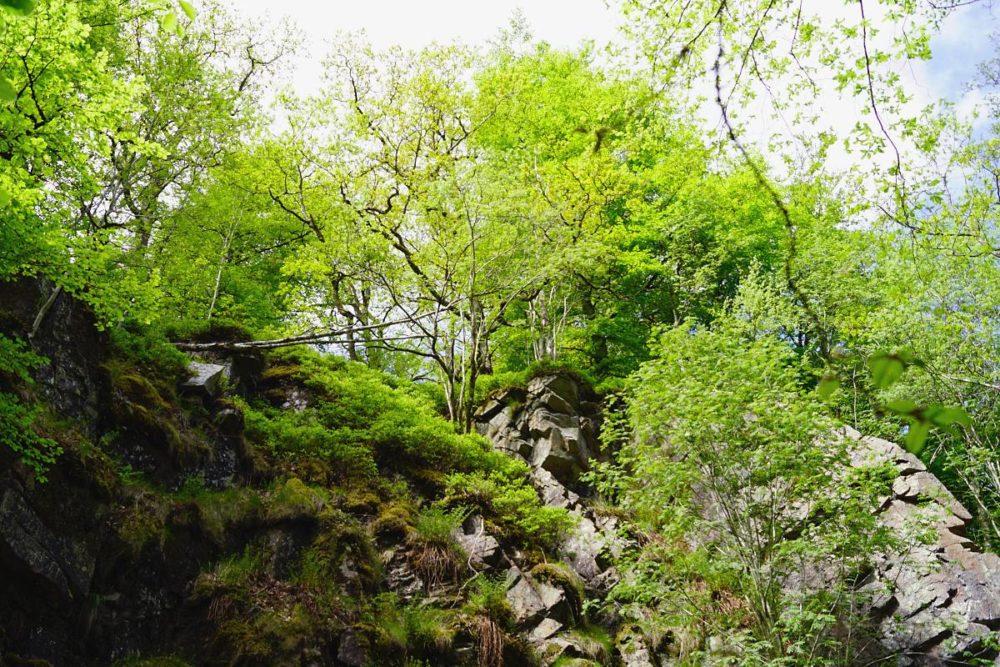 Söderåsen Nationalpark